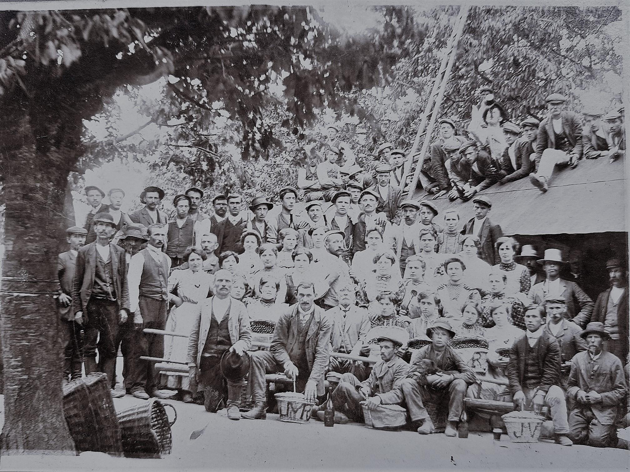 pracovníci zahradnictví Choltice