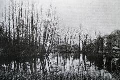 rybník Červený cca rok 1900